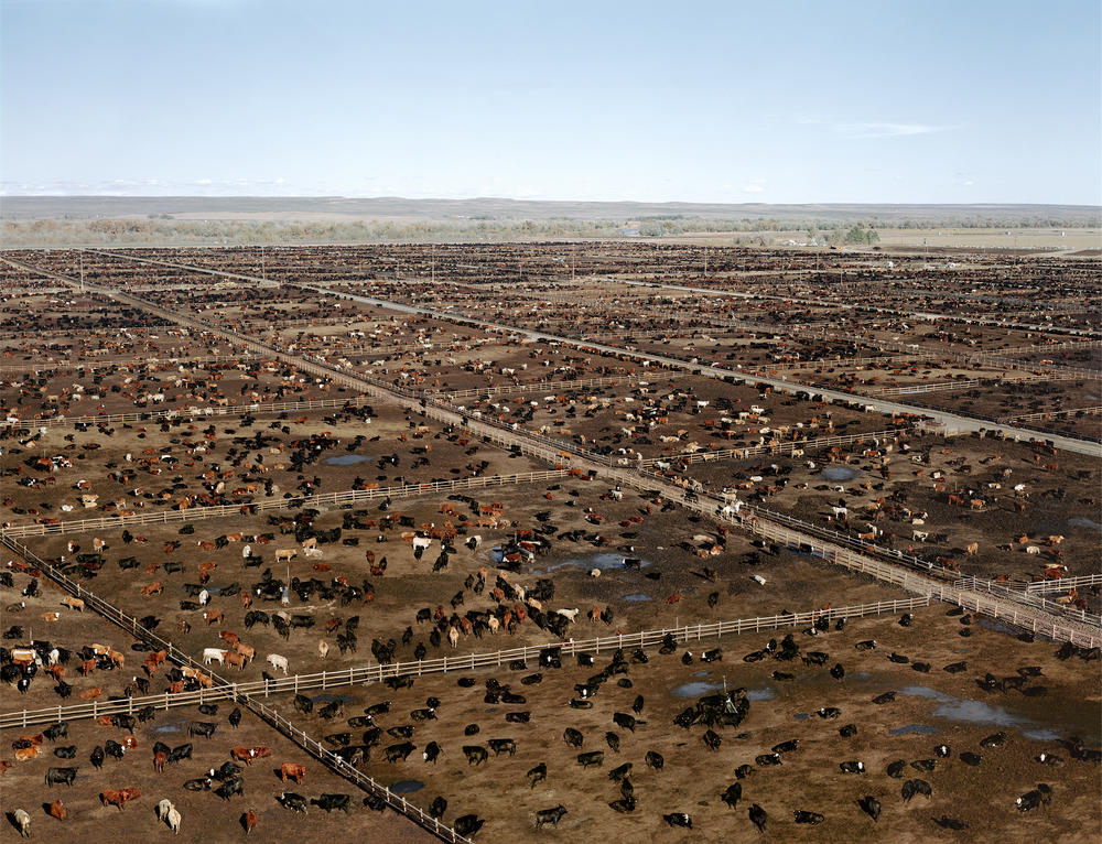 Andreas Gursky - Greeley