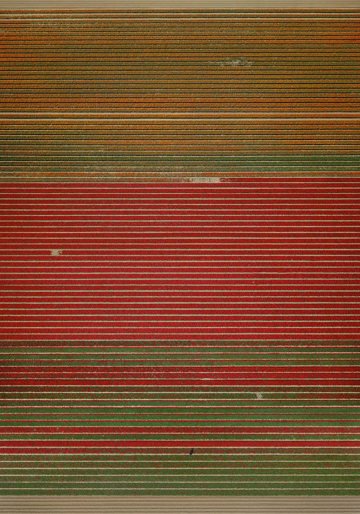 Andreas Gursky - Untitled XVIII