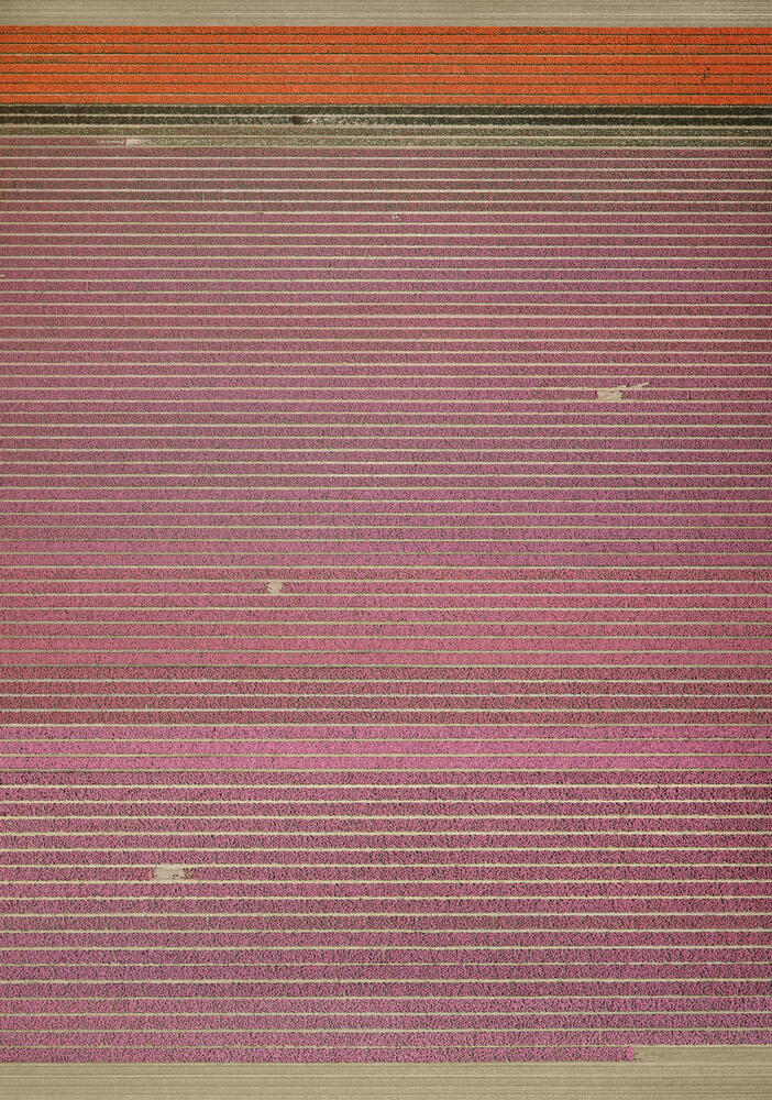Andreas Gursky - Untitled XIX