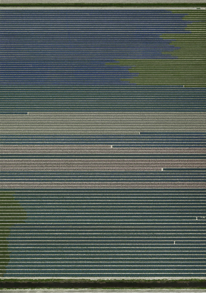 Andreas Gursky - Untitled XX