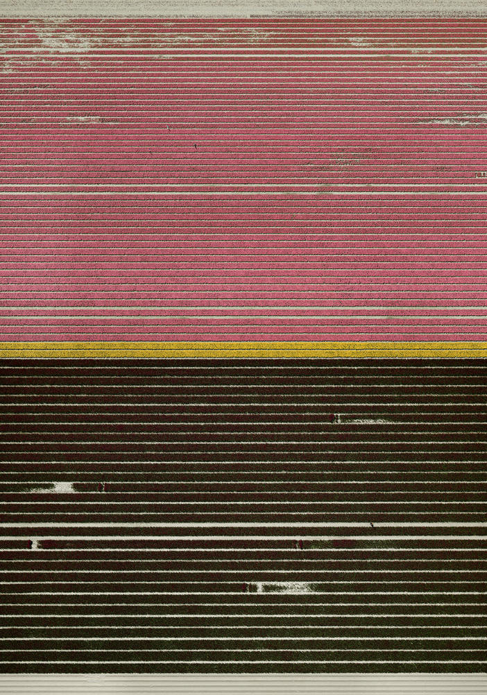 Andreas Gursky - Ohne Titel XXI